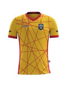 Koszulka Sublimowana Piłkarska Zina Tigra 04